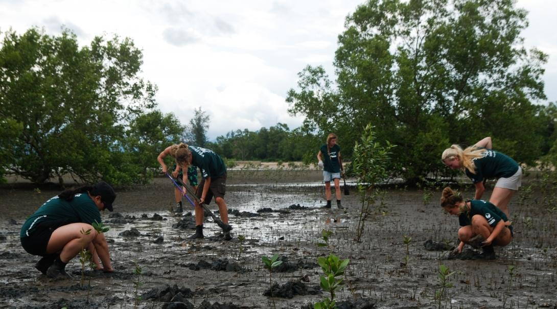 Teens help with mangrove reforestation during volunteer conservation work in Thailand